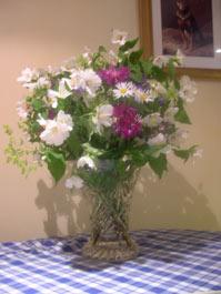 June flowers with Philadelphus Belle Etoile