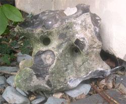 The Jester Stone