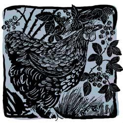 cochin hen (copywrite Celia Hart 2007)