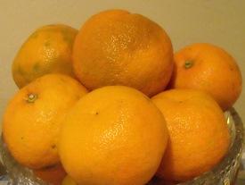 Organic Seville Oranges