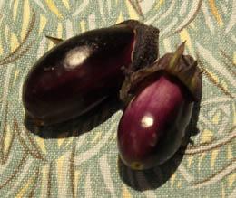 Photo: Baby aubergines