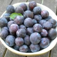 Hot spiced plum chutney recipe