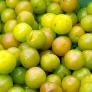 Green bullace jam recipe