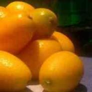 A fruit a month (AFAM) event. April 2008.
