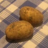 The Grand Potato Challenge