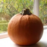 Pamela's perfect pumpkin soup recipe
